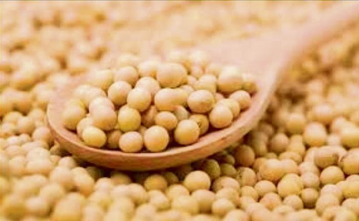 ■據兒科專家拉文指出,除花生、雞蛋和海鮮以外,豆蛋白也可能導致過敏症。網上圖片